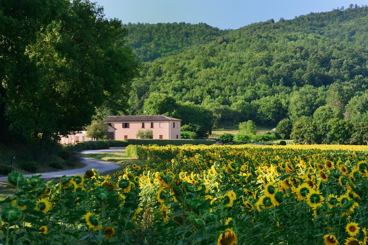 EXCLUSIVE FARM HOLIDAY WITH POOL, UMBRIA
