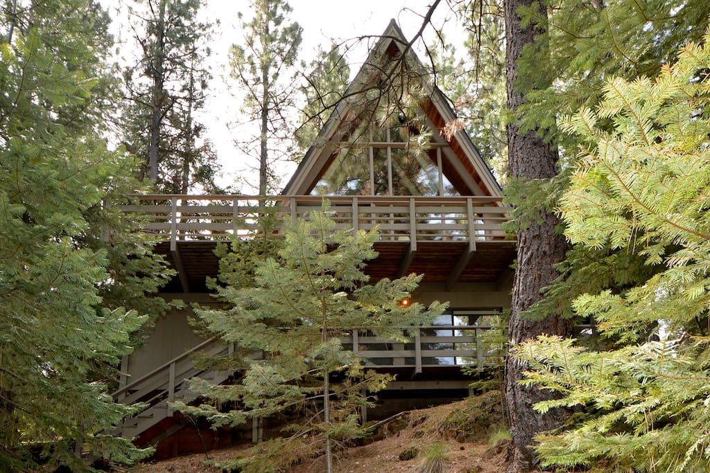 our A-frame cabin in a peaceful setting amidst the trees