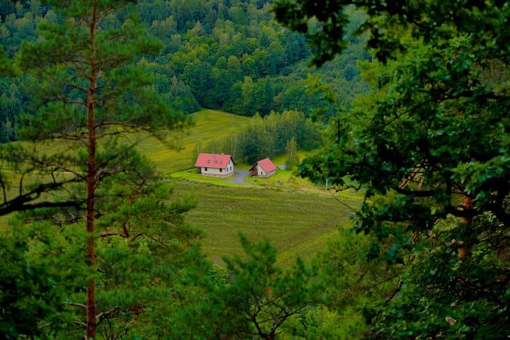 Agatowe Piekielko, cały dom - cisza,spokój,las - Nowy Kościół - Casa