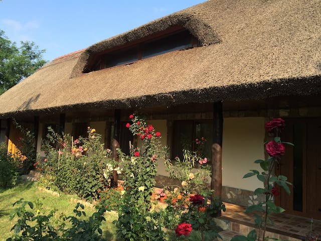 Traditional rooms in the heart of Danube Delta