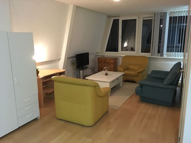 Top floor studio near Amsterdam centre - Amstelveen