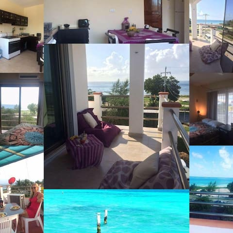 oceanview Penthouse, special offer june &july - Puerto Morelos - Apartment