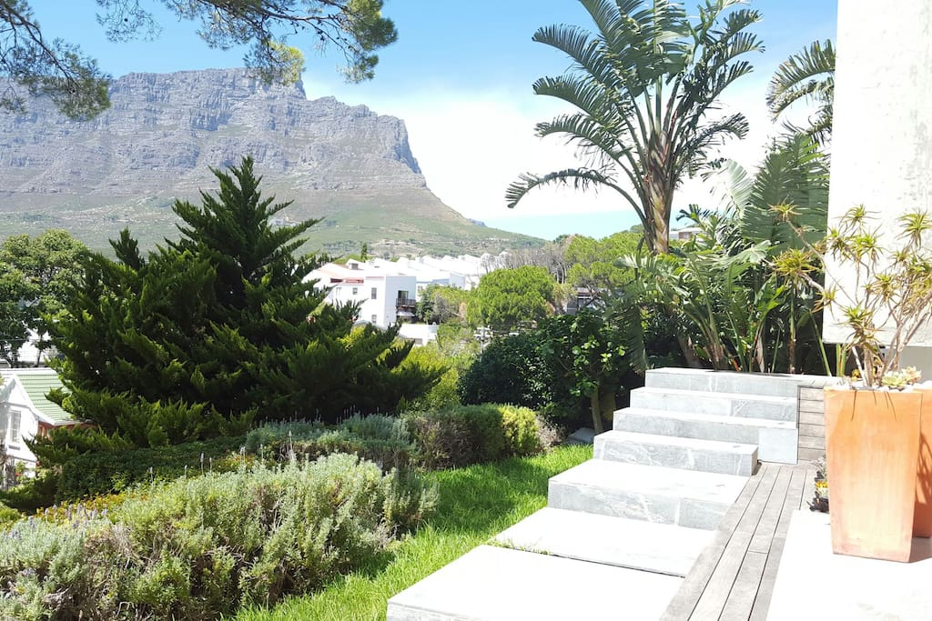 Front garden overlooking Table Mountain and steps leading to front door.