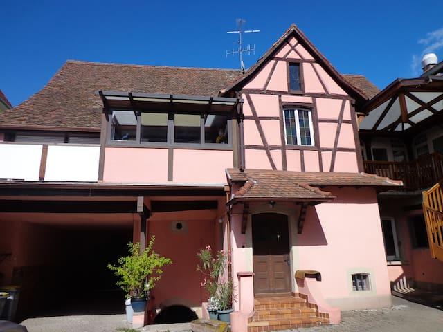 Appart Centre Alsace  entre Colmar/Strasbourg - Benfeld - Huoneisto