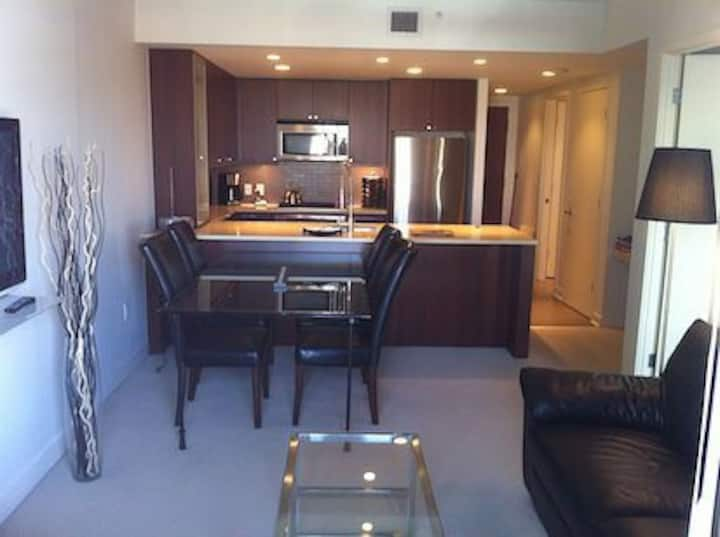 Great views, DT 2 bed-1 bedroom condo with parking