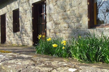Maison traditionnelle bretonne entourée de nature - Ploërdut