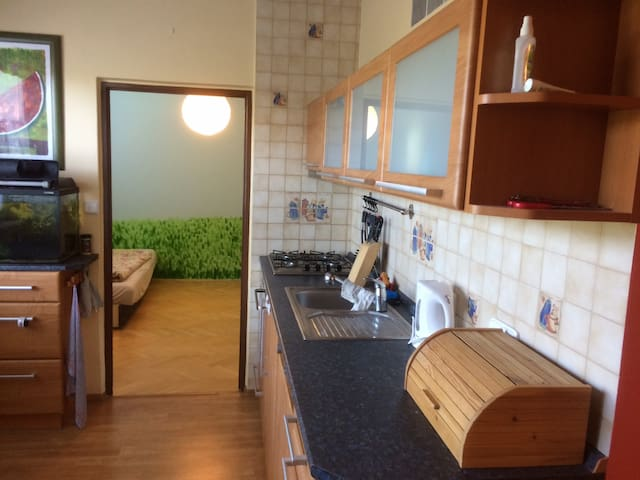 Nice, fully equipped 3 bedroom apartment + Garage