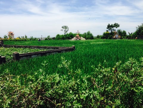 Nam Dinh Pro - nice countryside