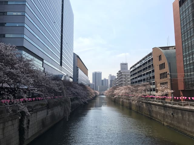 """Share room for """"girl"""" only. 2 min to Meguro river. - Meguro-ku - Daire"""