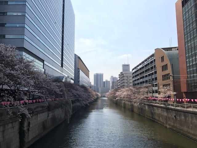 "Share room for ""girl"" only. 2 min to Meguro river. - Meguro-ku - Apartamento"