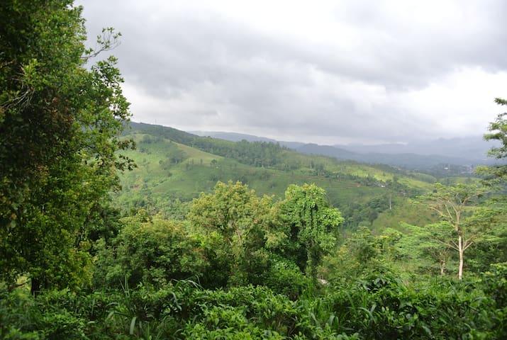 Donside Tea Estate Bungalow - Nawalapitiya - บังกะโล