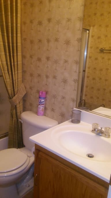 Personal bathroom. Very clean, shower and bathtub. Towels and toiletries included.