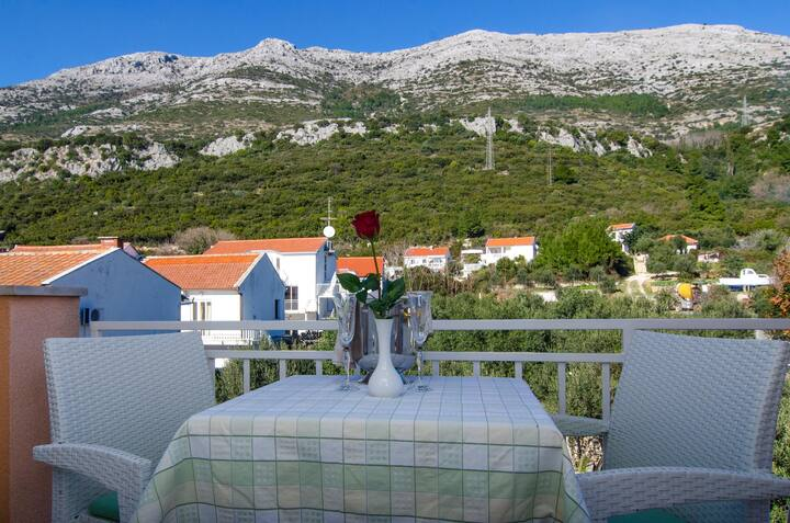 Apartment Villa Vrgorac with breakfast-park view