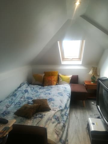 Loft room with double sofa bed