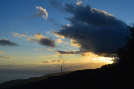 Casa do Eucalipto | Be with nature | T2 | Madeira