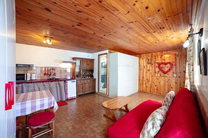 Studio neuf, 25 m²,  a 300 m du coeur du village