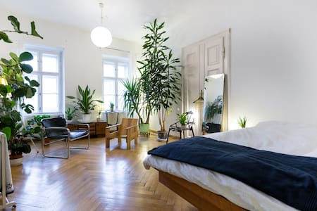 Bright, Spacious Room In Vienna's 8th district - Vienna