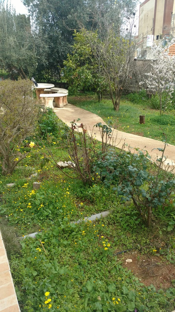 Cozy, garden apartment near the Old City of Tzfat