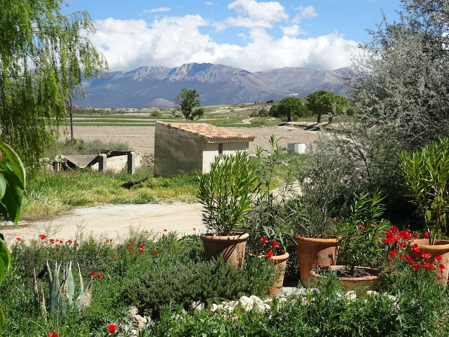 Mountain and garden view from the front of the Cortijo