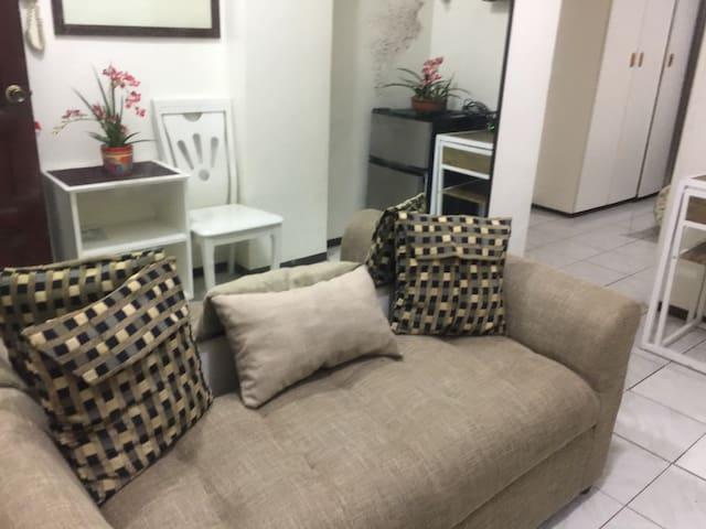 1 Bedroom Condo Unit near University area Malate