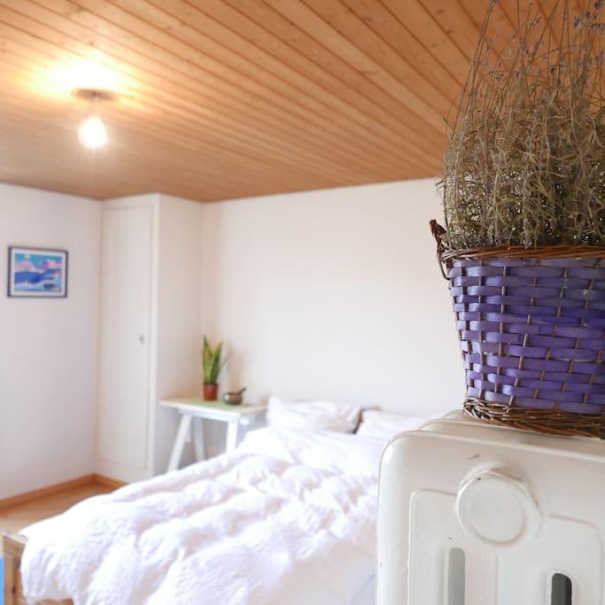 Lavender plant in Master bedroom
