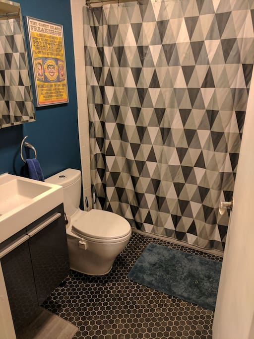 Shower, pee, and poop to your heart's content in this newly renovated bathroom
