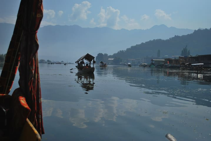 Comfy Family Houseboat in Dal Lake, Kashmir - srinagar - Boat