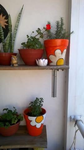 Habitación tranquila en suburbano - San Andres - 一軒家