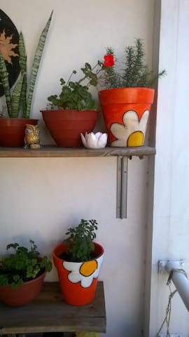 Habitación tranquila en suburbano - San Andres - House
