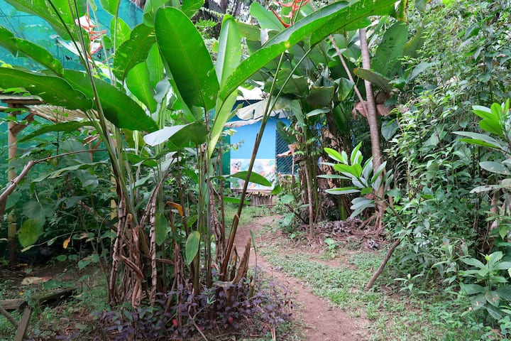Private cabin in Puerto Jimenez close to airport