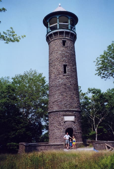Stone tower in back yard
