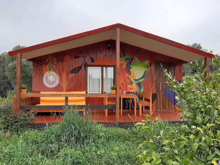 Camp House 2