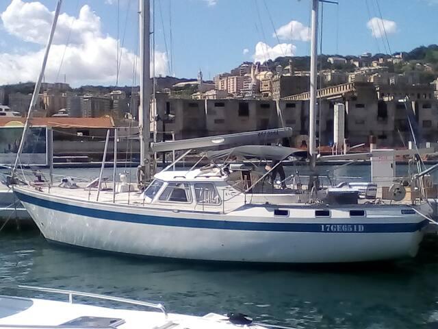 Dormire in barca nel cuore di Genova !!!seagull 2
