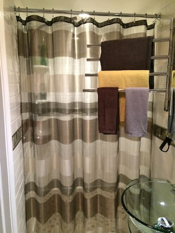 Full bathroom with awesome shower