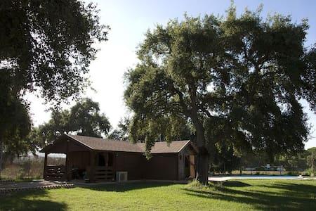 EL CHAPARRO - Casa de madera en plena naturaleza. - Arcos de la Frontera - Naturstuga