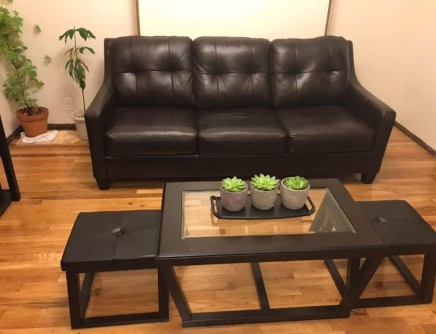 Leather couch with pull out sofa. Center table with extra seating