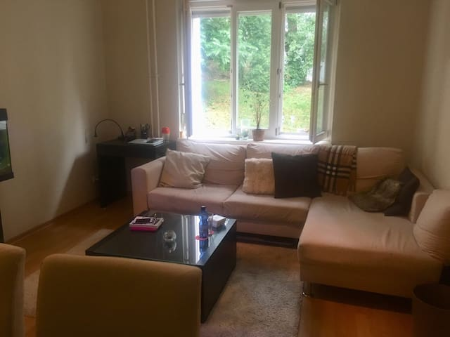 Sofa bed, work desk, coffee table & dinning table