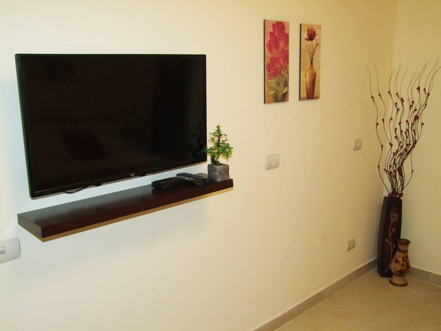 Плазменный телевизор со спутниковыми каналами