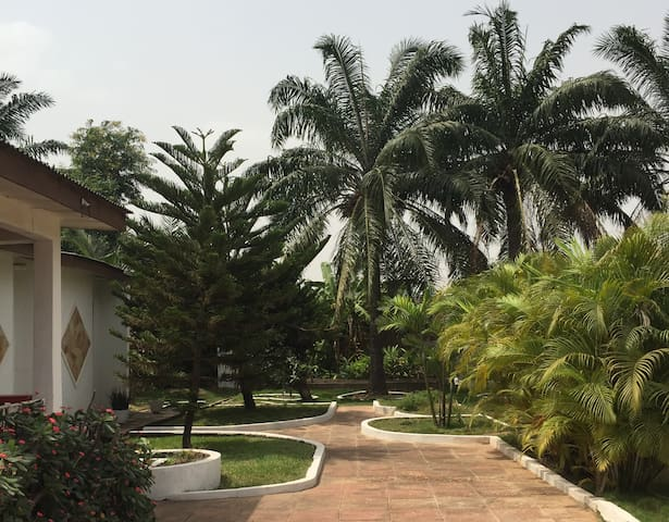 Palm Grove - An artist's garden paradise (Room 2)