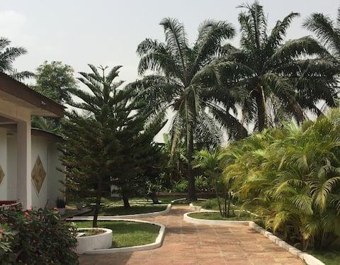 Palm Grove - An artist's garden paradise (Room 2)