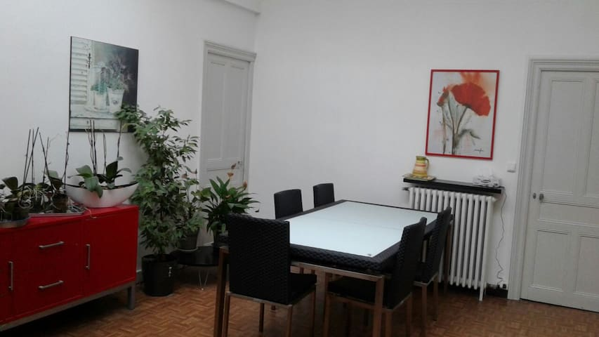 Appartement rénové - saint amans Soult  - Appartement