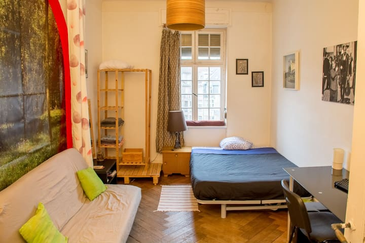 Furnished room near down town and train station - Metz - Wohnung