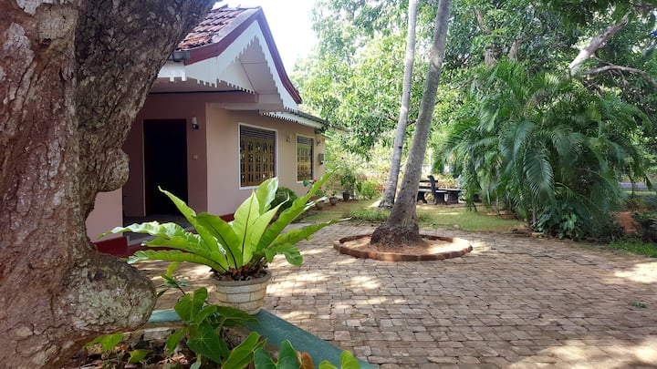Thilan's Safari Resort