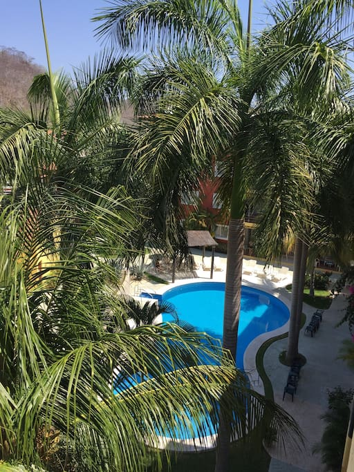 Tropical settings.