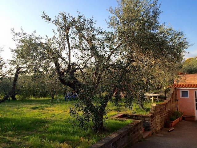 Relax nella campagna romana - Lanuvio - Daire