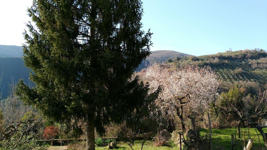 Relax tra le verdi colline sabine, un'ora da Roma - Poggio San Lorenzo - Casa