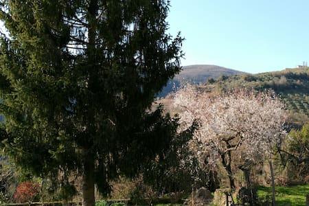 Relax tra le verdi colline sabine, un'ora da Roma - Poggio San Lorenzo - Haus