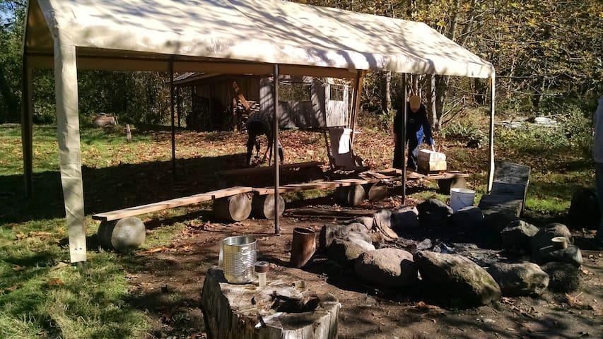 communal campfire circle
