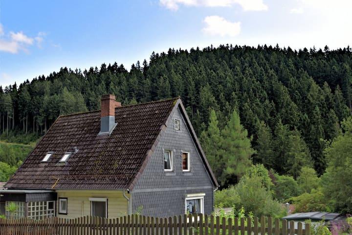 Pleasant Apartment in Wildemann amid Forest