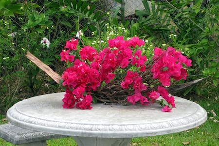 Bougainvillea 2 bedroom garden apartment - Buccament - アパート